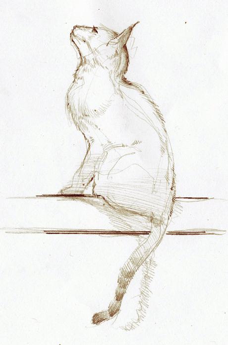 Sketch_47.jpg