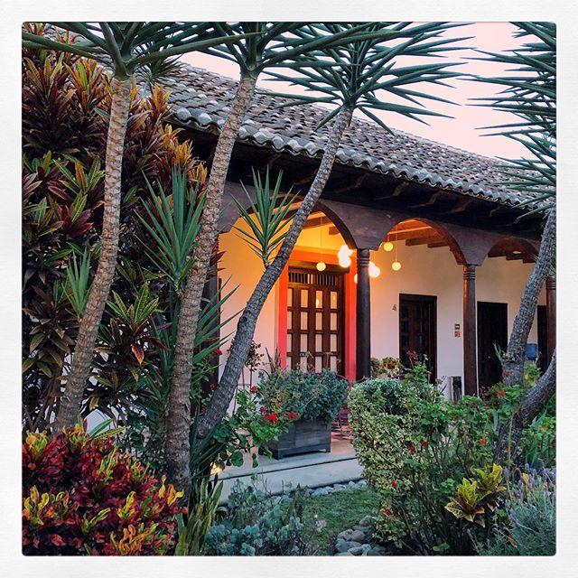 June 2019. #hotelcasadelina #oldhousestyle #gardendesingn #tesorosdemexico #designhotel