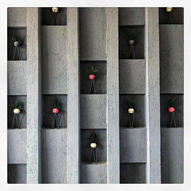 Walking to the parking. #designhotels #hotelcasadelina #details