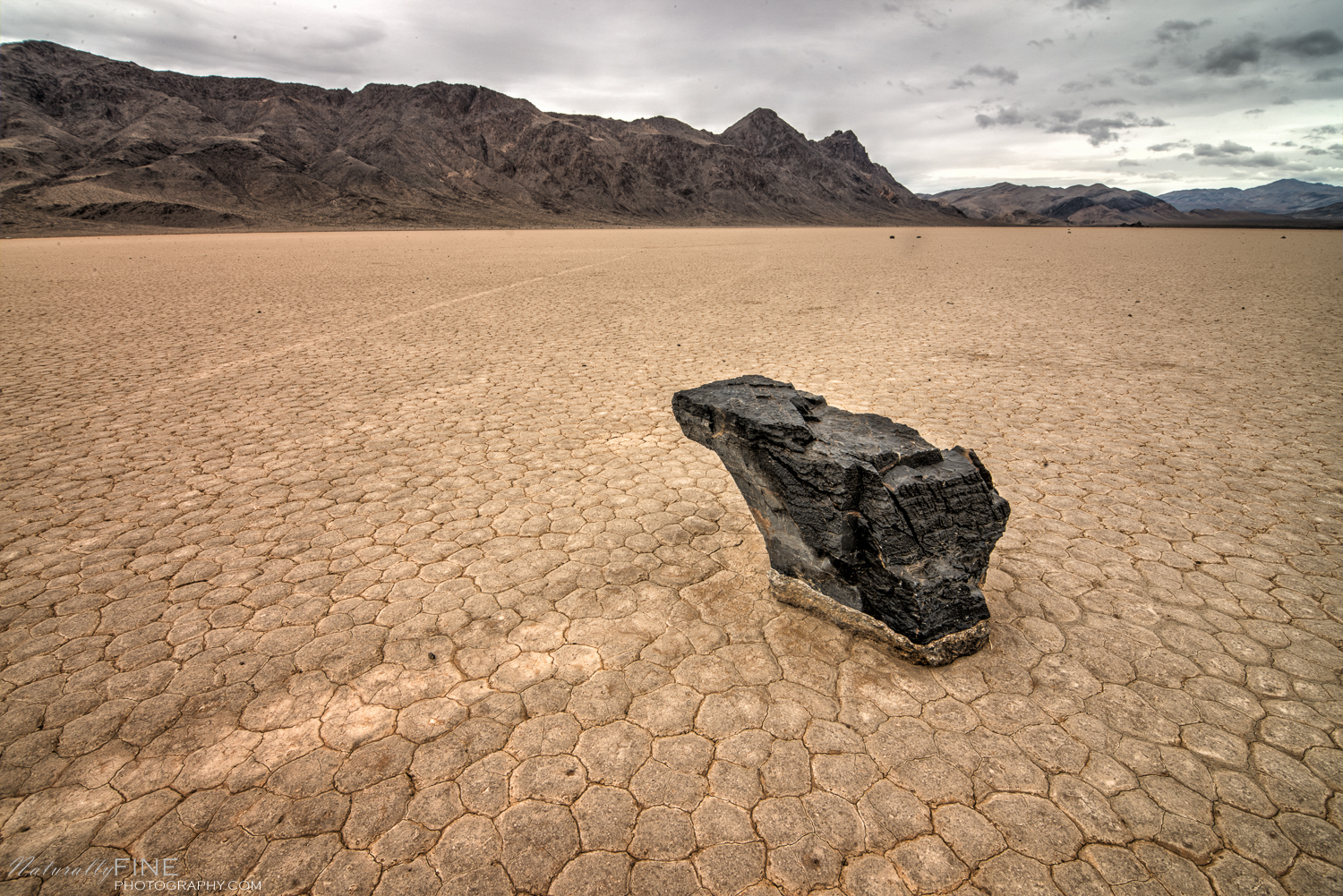 A Frog -This rock traveled one hundred yards or so, propelled by natural forces, ending up in the middle of Racetrack Playa in Death Valley.