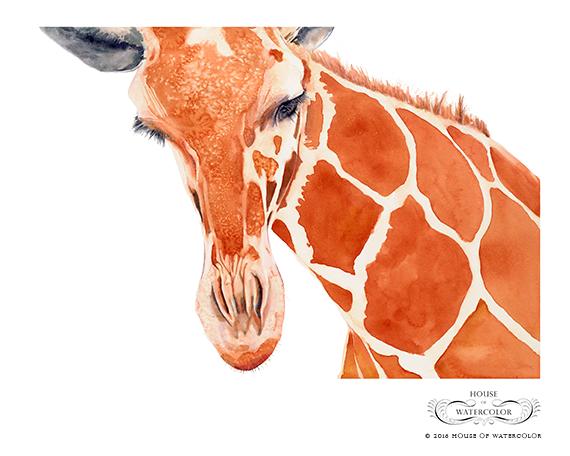 """""""Lovely Lashes Giraffe"""""""