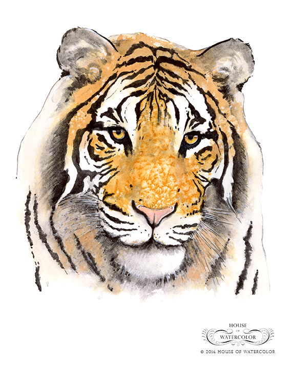 """""""2016 Naturally Inspired Paint Out - Tiger"""""""