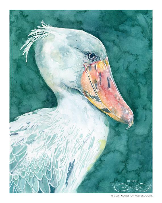 """""""Shoebill Bird"""""""