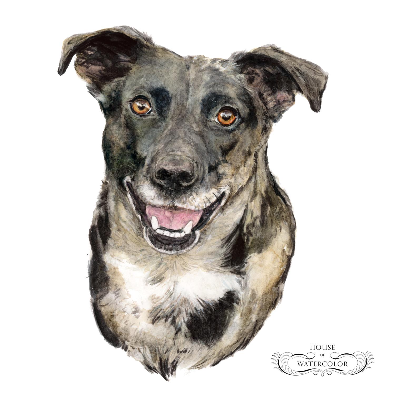 Pet-Portrait-Pixel-House-of-Watercolor.png