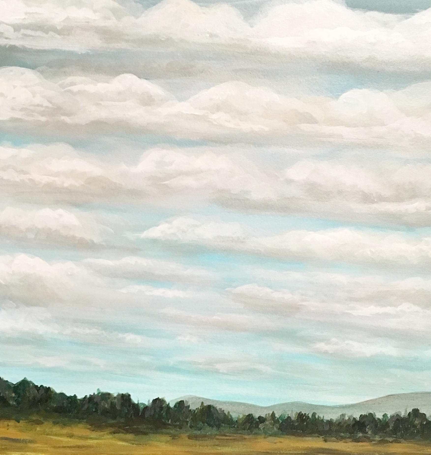 """""""The Foothills on a Cloudy Day""""  by Sarah Mandell (January 27th, 2018)"""