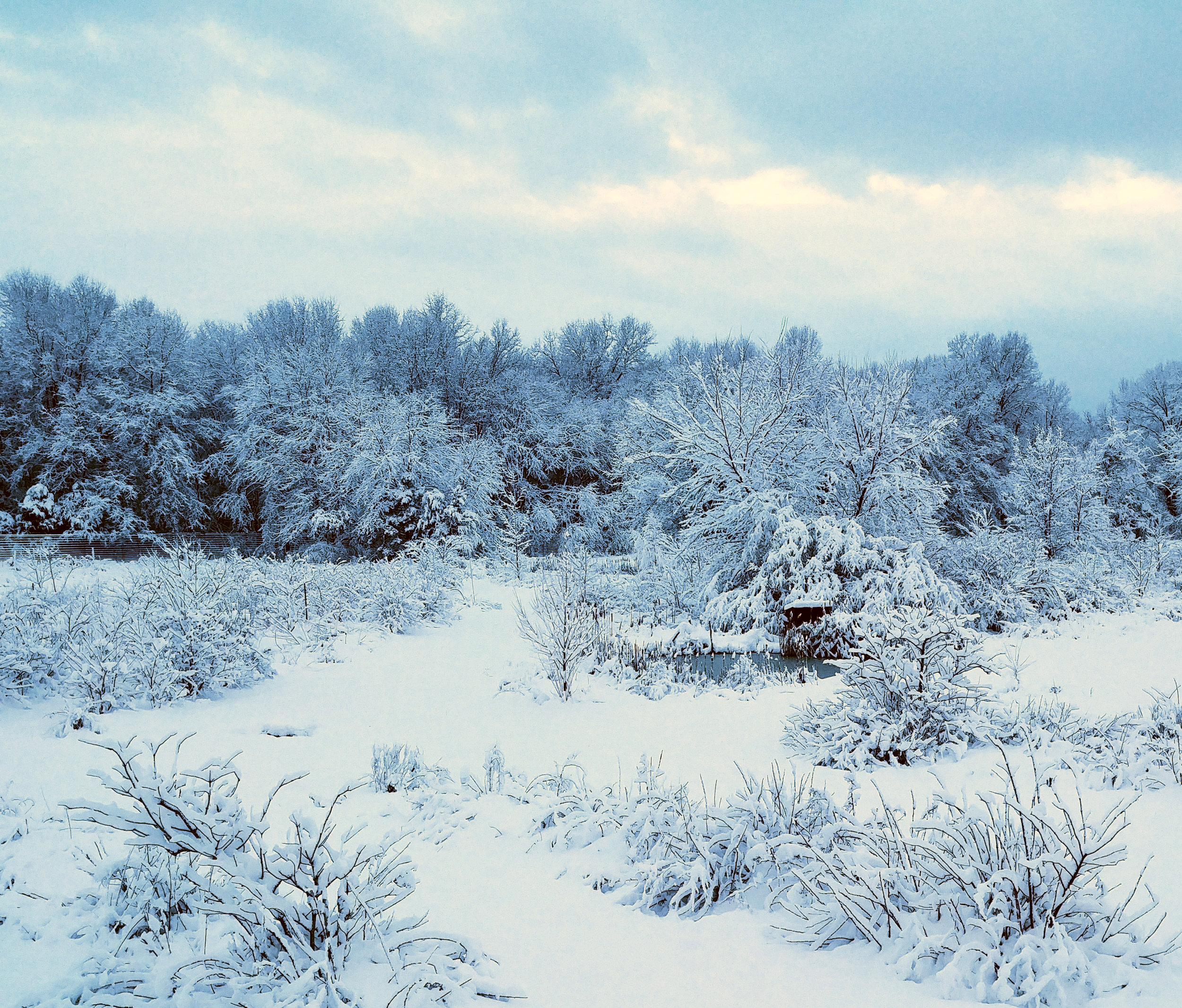 snow-center-field-0304190641_HDR.jpg