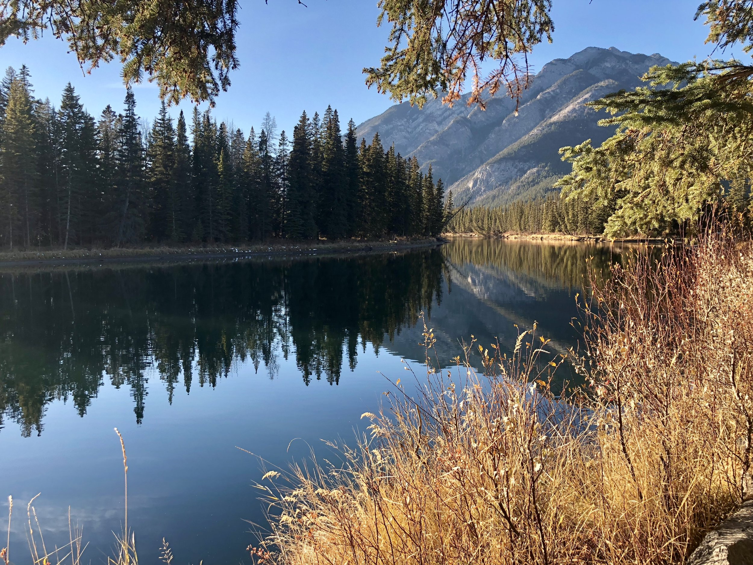 YFC Regional Training - Banff October 2018