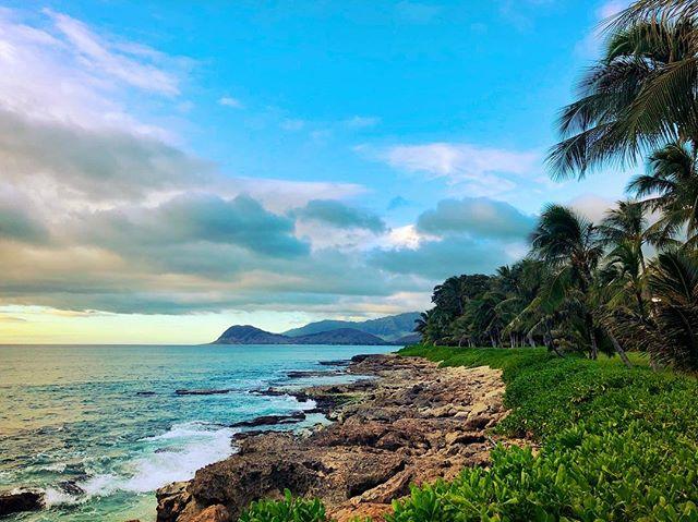 🏝 🎉 Happy New Year from paradise! #hawaii #hawaiilife #beachlife