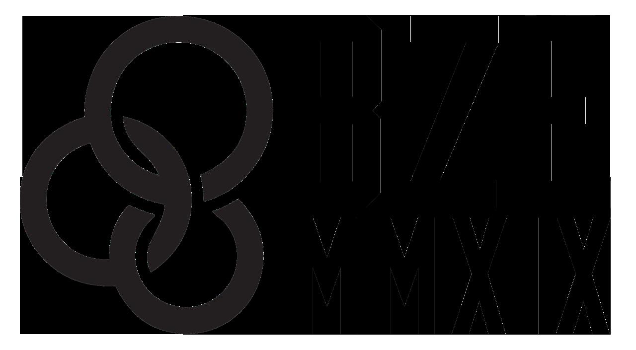 PS 2019 HOODIE logo.png