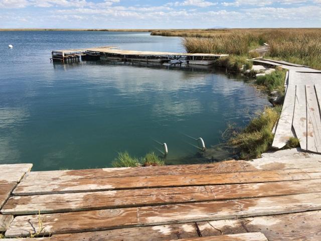 Blue Lake Springs-5.jpg