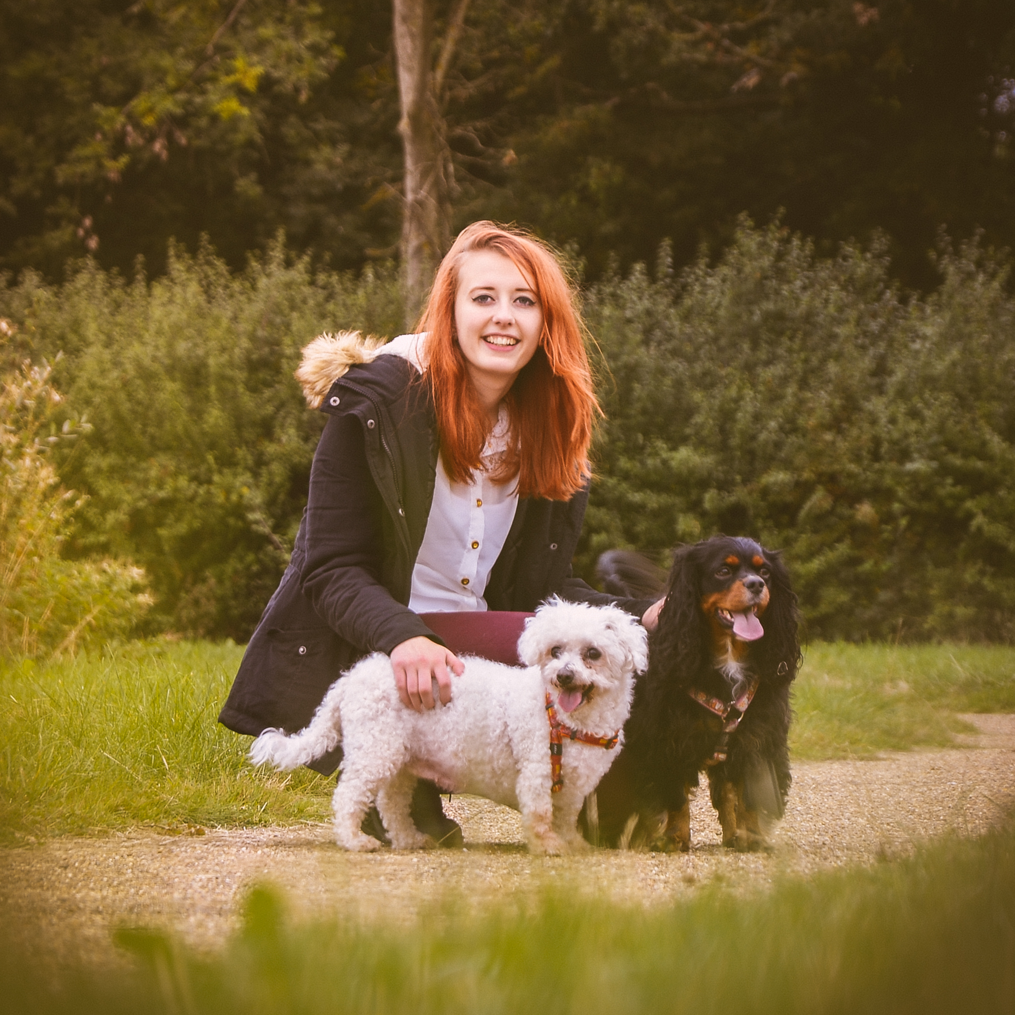 Issy with the pups