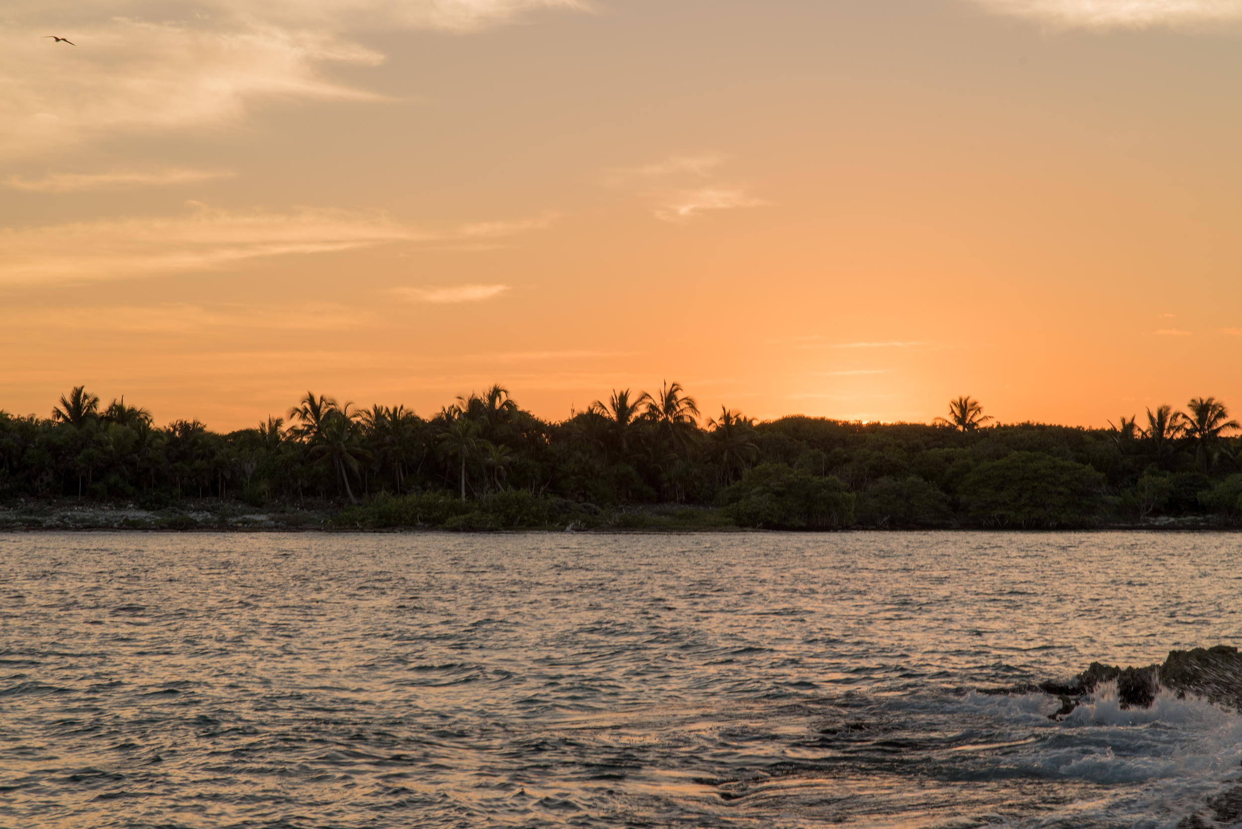 Mexico-Deserted-Island-097.jpg