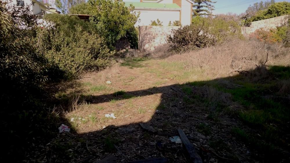 Abandoned House - yard.jpg