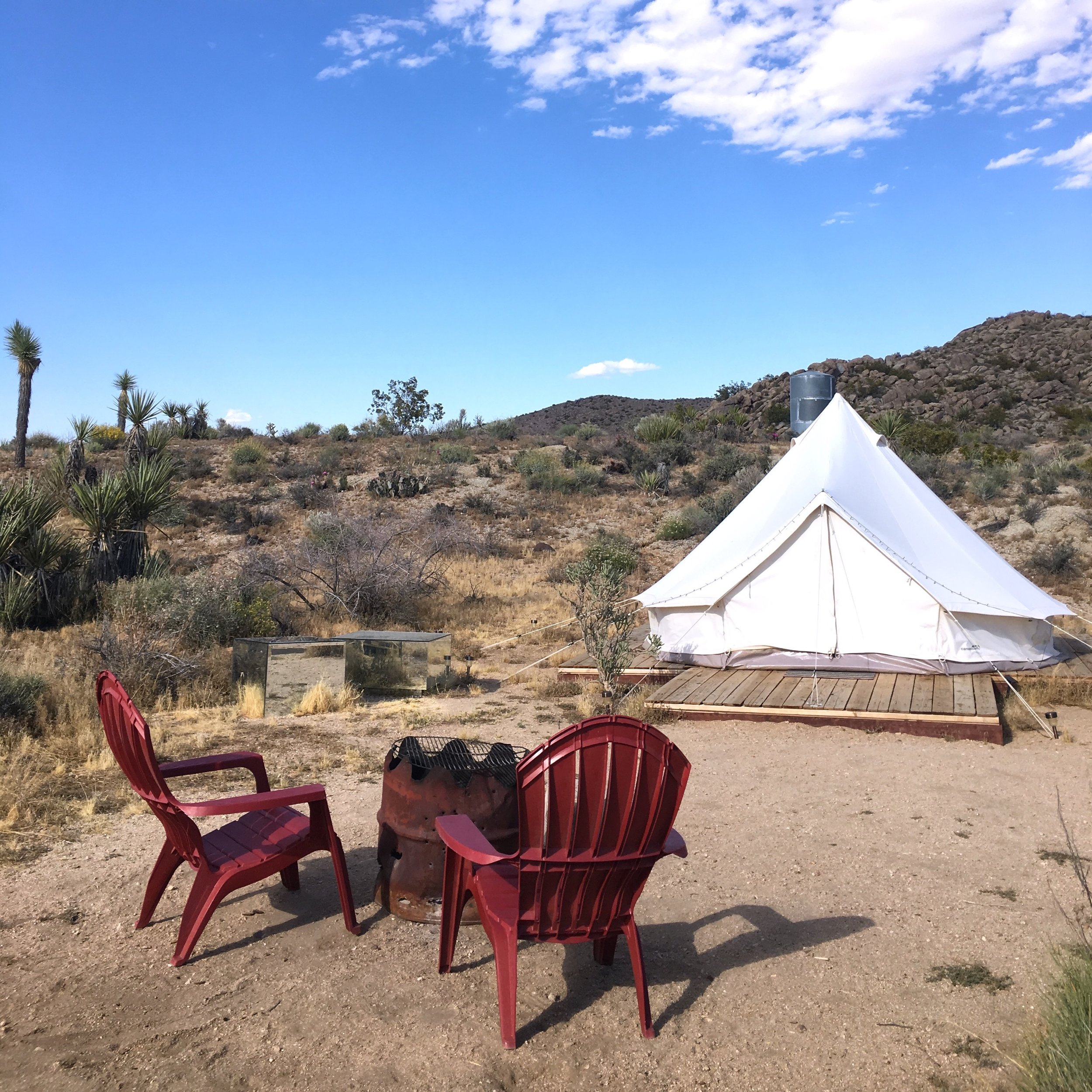 Joshua Tree Glamping Camp Site square.jpeg