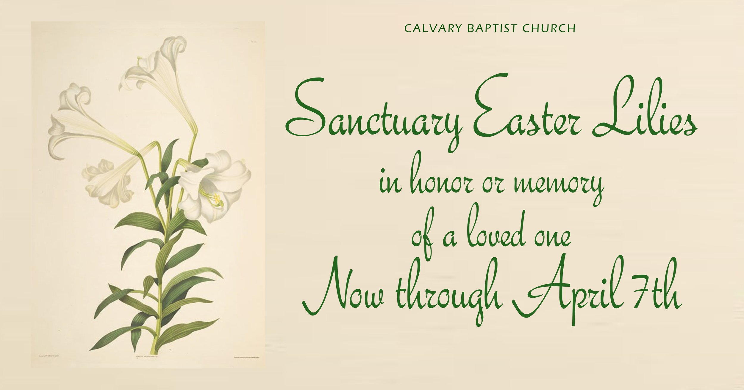 Easter Lily fb 2019.jpg