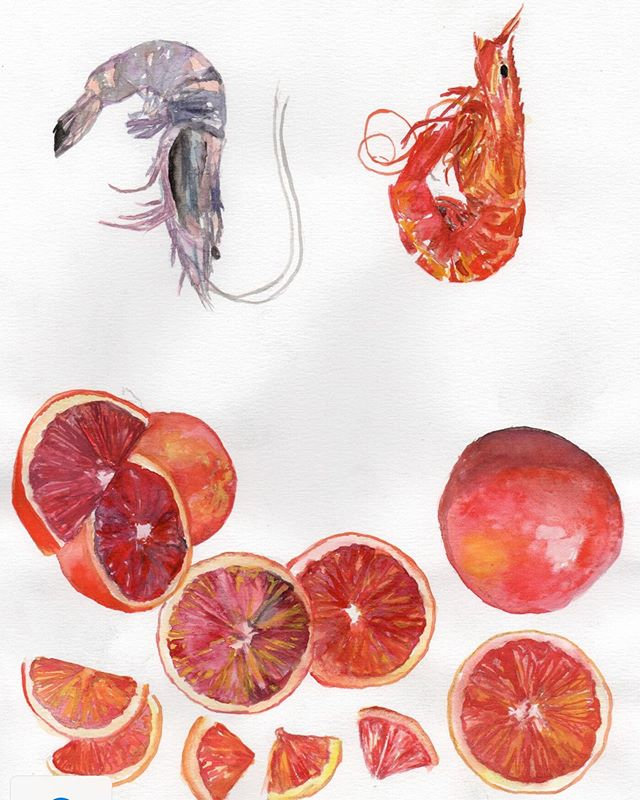 It's looking fishy with a squeeze of blood orange.  This venue is shaping up. Complete with a restaurant, bar, wine store and grocer...designed by us @melissacollison  All to be revealed soon but here's a hint...part of our artists artwork for the team uniforms we are designing.  #uniforms #art #mediterraneanfood #italian #bloodorange #octopus #sardines #restaurantdesign #hospitalitydesign #restaurant #bar #winecellar #grocer