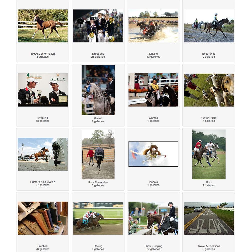 Searchable image archive of equine news, features and current topics for editors, publishers and art directors.