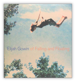 cover_gowin2.jpg