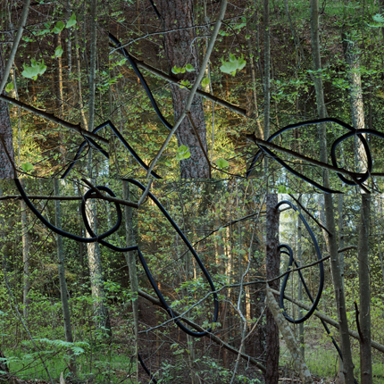 Kuri (Black Line on Green), 2005-06 48 x 48 inches edition of 3 archival lightjet print mounted front and back to plexiglass