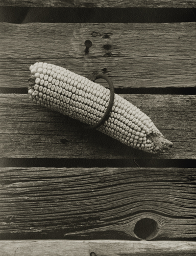 Wright Morris Uncle Harry's Farm, c.1947 4.75 x 3.75 inches vintage silver print