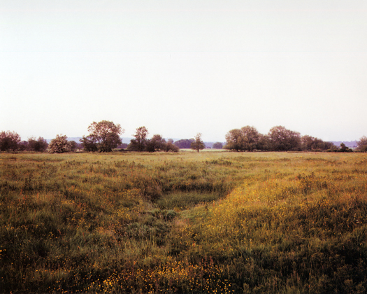 Brampford Speke, 1996 from the series  Dew Ponds  31.5 x 40 inches edition of 8 chromogenic dye coupler print