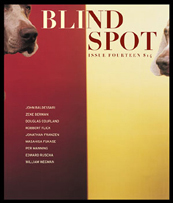 Blind Spot 14