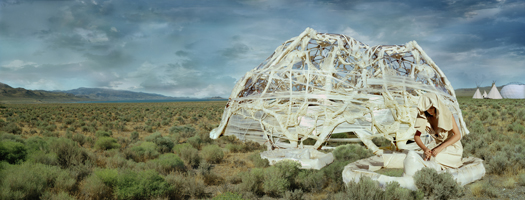 Elysian Fields, 2006 15 x 40 inches 25 x 60 inches edition of 5 chromogenic dye coupler print mounted to dibond aluminum