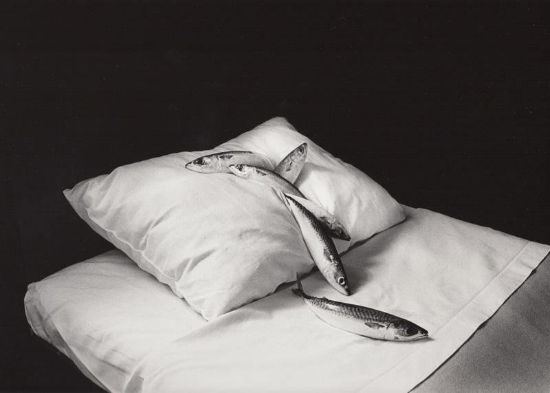 w_kon_mackerel_and_pillow_1979.jpg