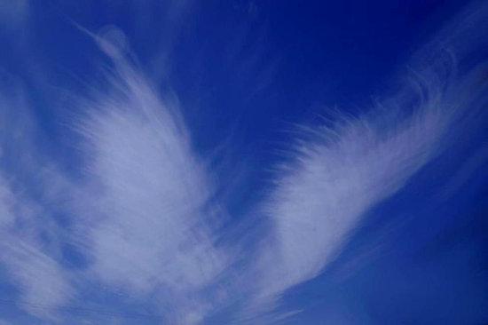 Blue Angel Wings, by redbubble.com