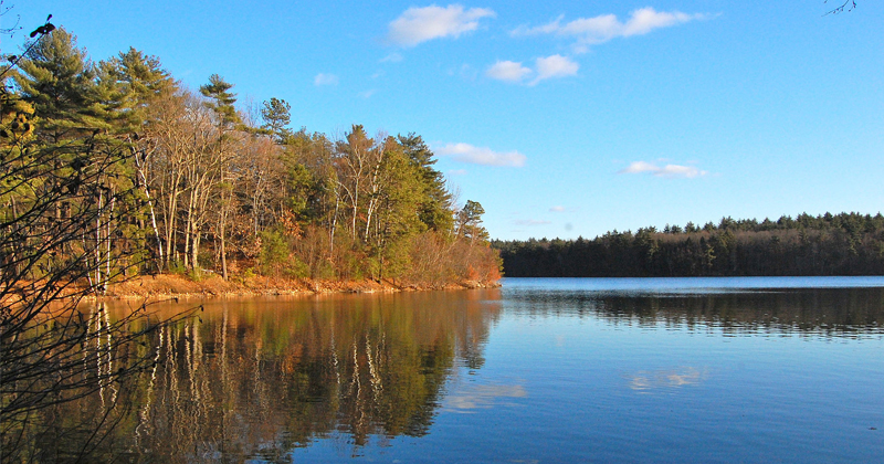 Walden Pond by Literary Hub