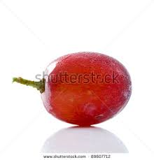 image by shutterstock.com