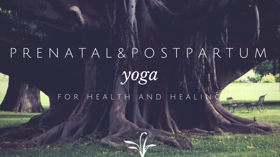 prenatal yoga postpartum yoga new orleans health pregnancy