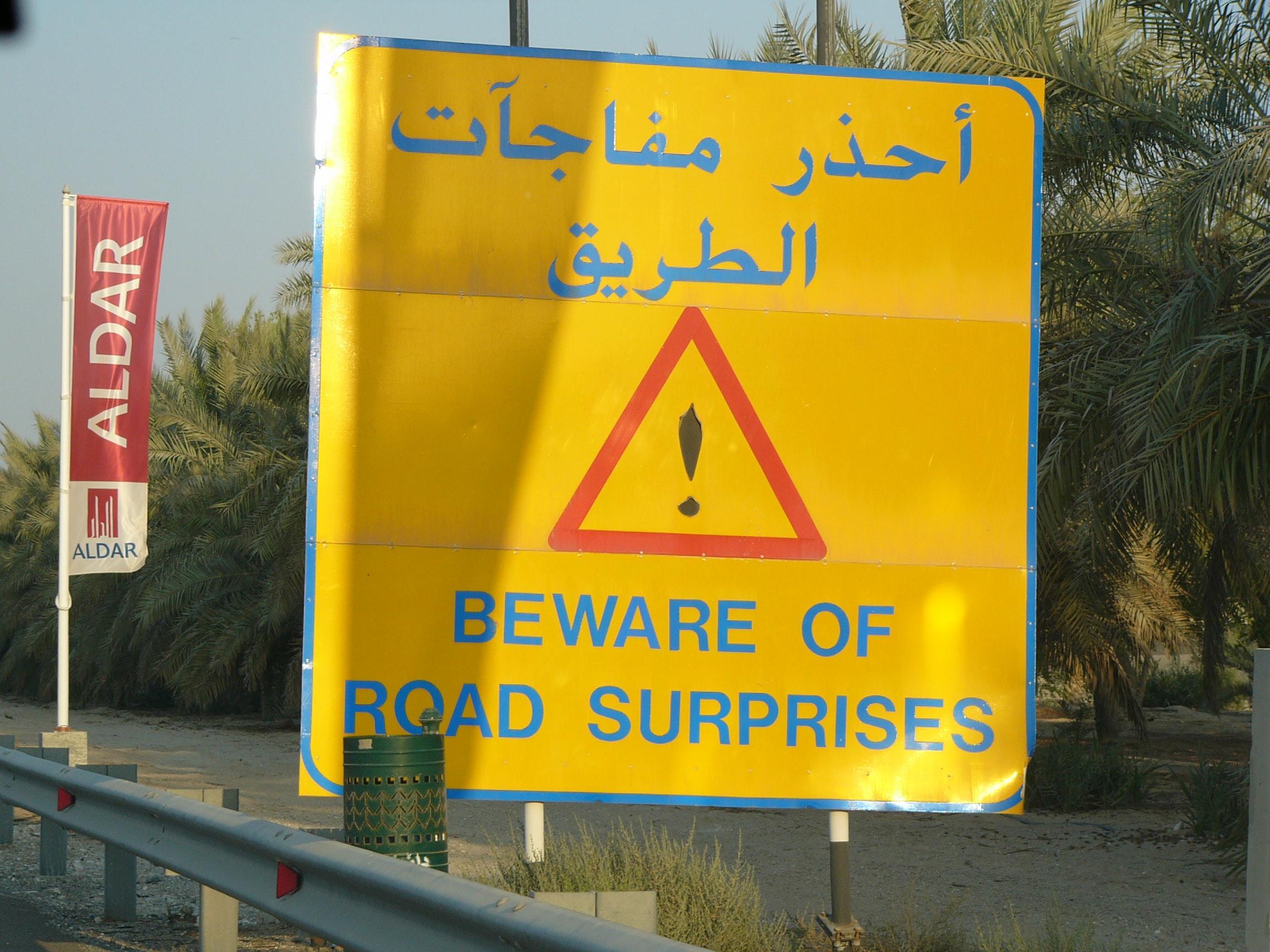 road surprises.jpg