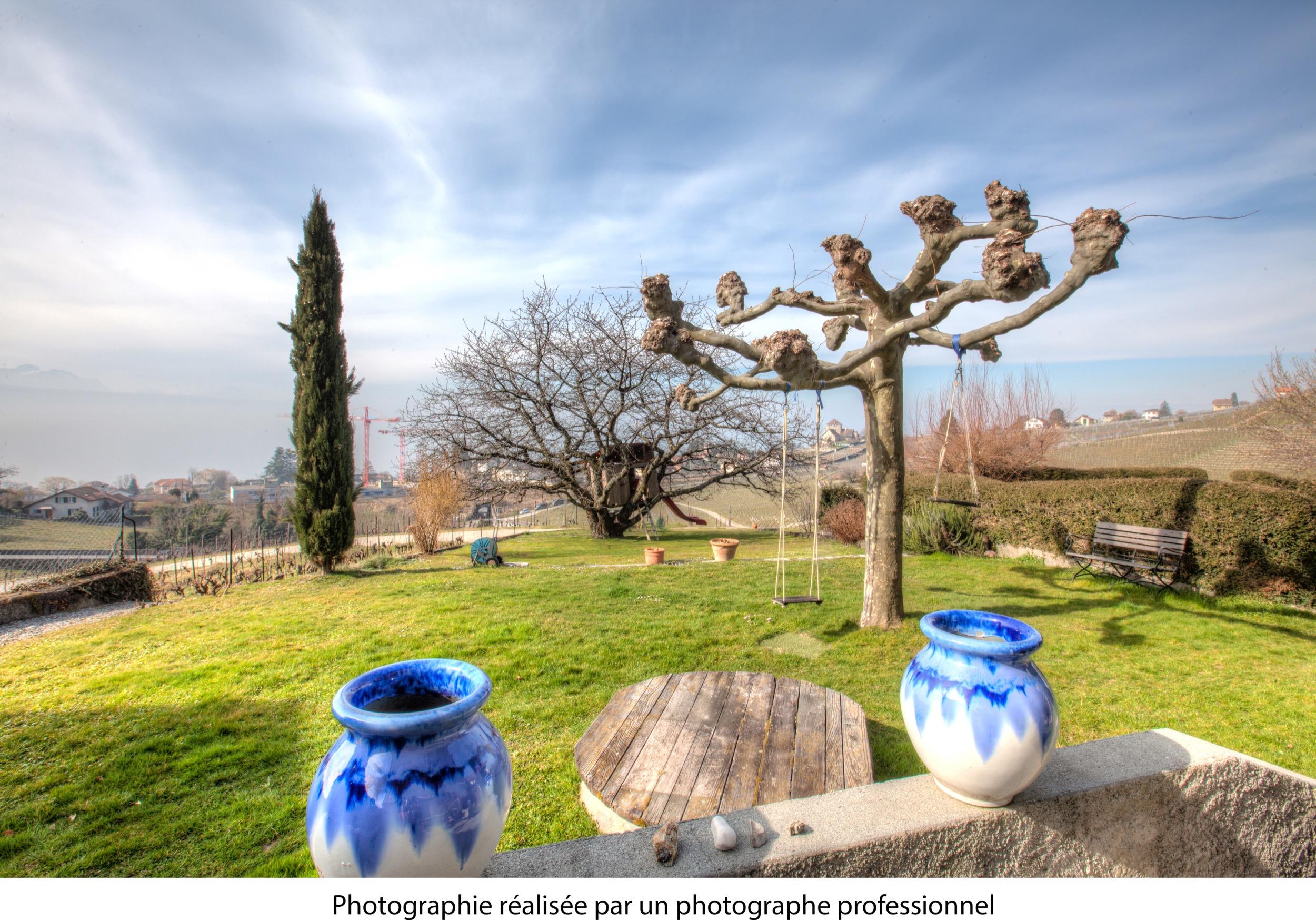 jardin pro.jpg