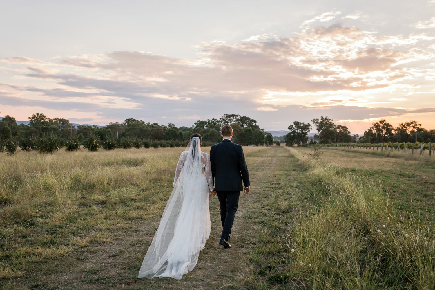 sarah jared the vinegrove mudgee canberra wedding photographer erin latimore 84.jpg