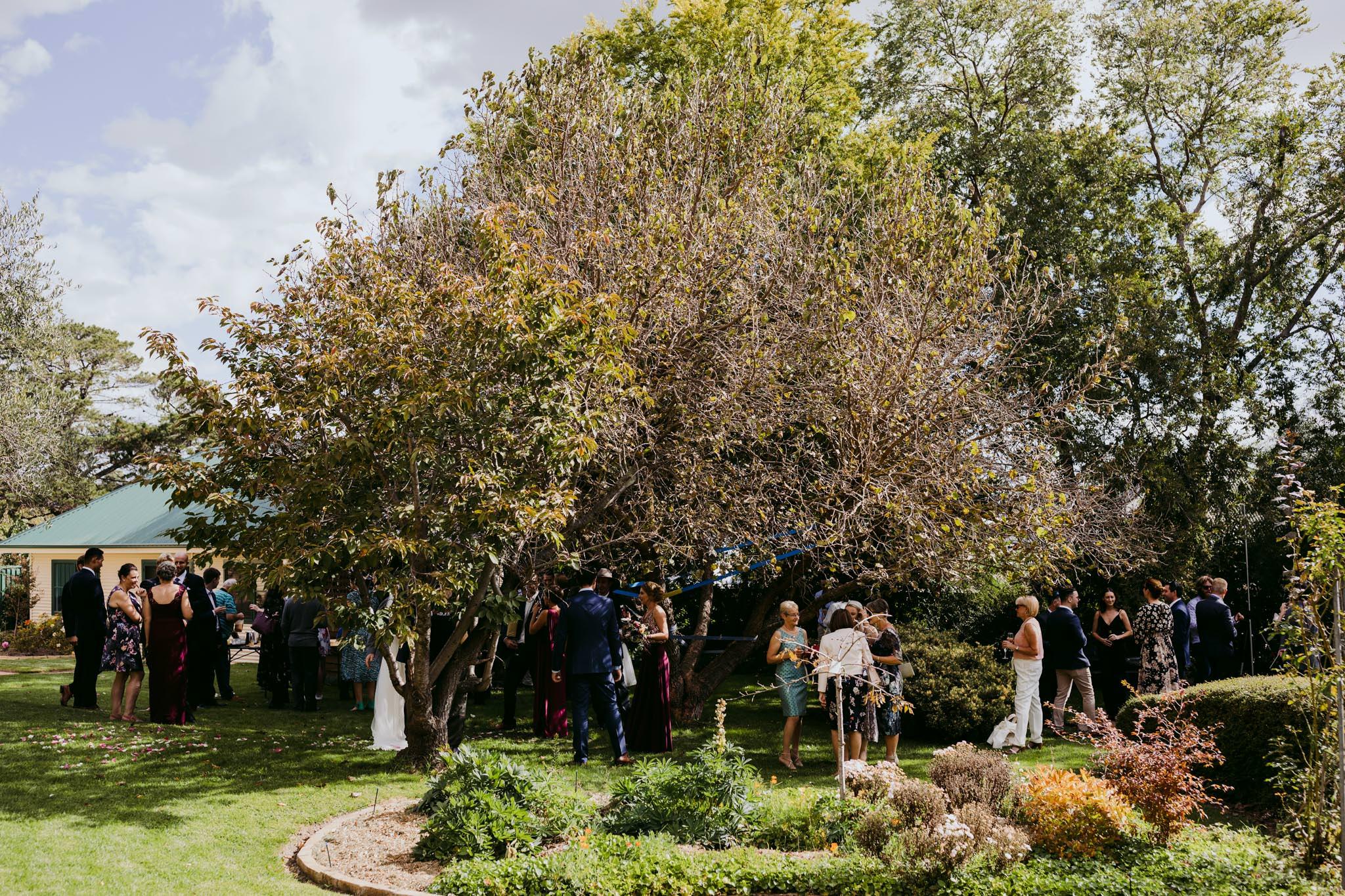 Erin Latimore Mudgee Canberra Wedding Photographer ROSEBANK GUESTHOUSE OLD THEATRE TONIC MILLTHORPE_370.JPG
