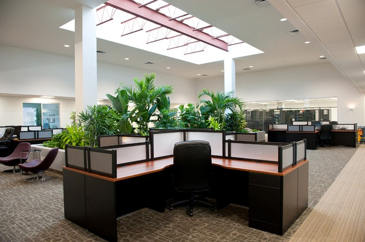 Commercial Interior Painting Services.jpg