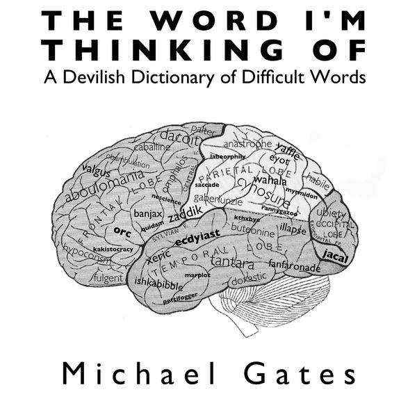 The Word I'm Thinking Of: A Devilish Dictionary of Difficult Words