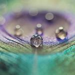 droplets.thumb.jpg