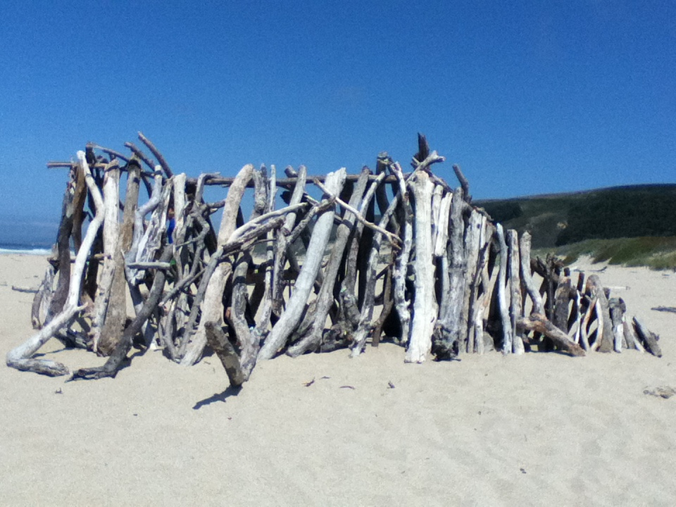 Imagination and driftwood go together