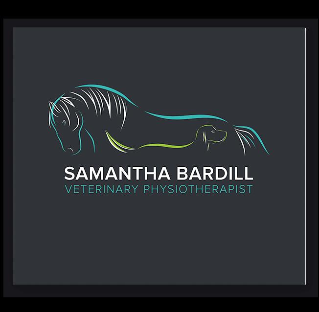 Veterinary Physiotherapist Logo Design