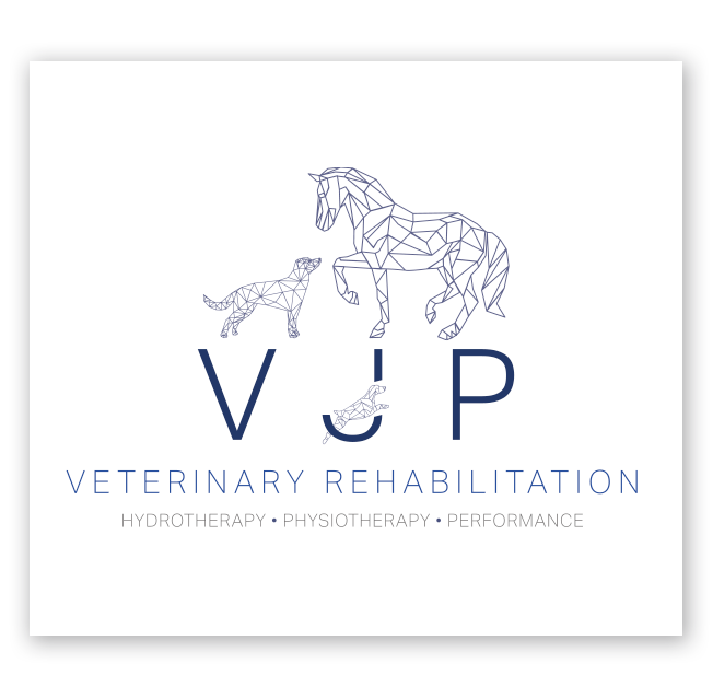 VJP Veterinary Rehabilitation Logo Design