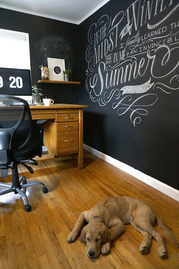molly jacques office