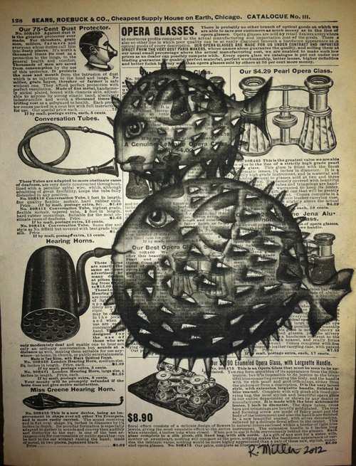 """Blowfish Earhorn   Charcoal on antique catalog page, 8 1/2"""" x 11"""""""