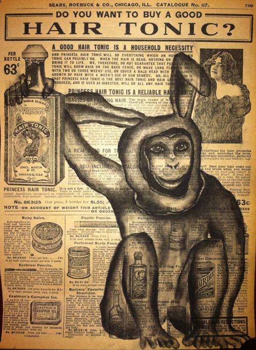 "Monkey Tonic   Charcoal on antique catalog page, 8 1/2"" x 11"""