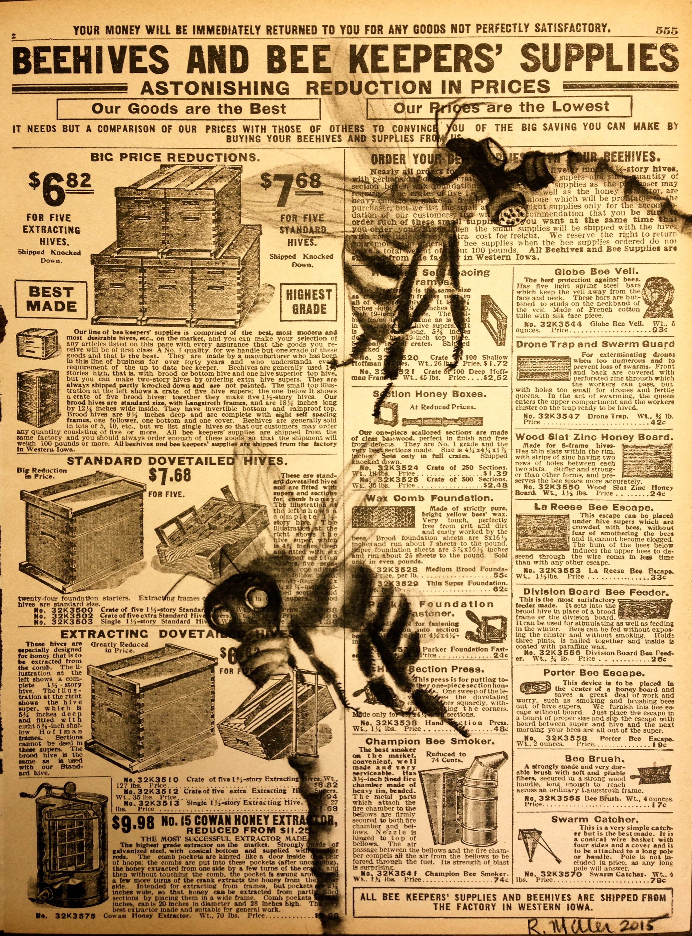 Beeware, 2015   Charcoal on antique catalog