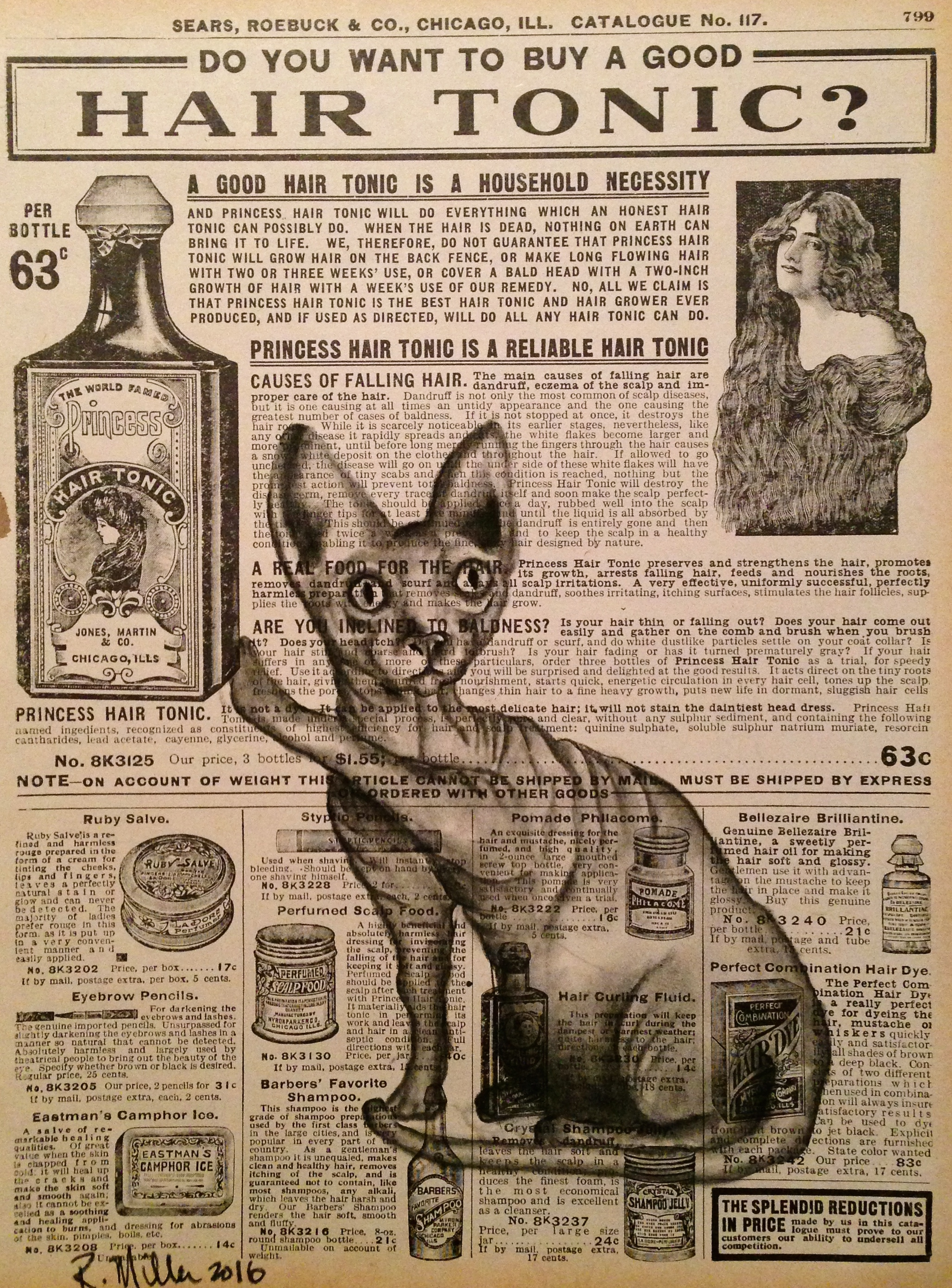 Hair Tonic, 2016   Charcoal on antique catalog