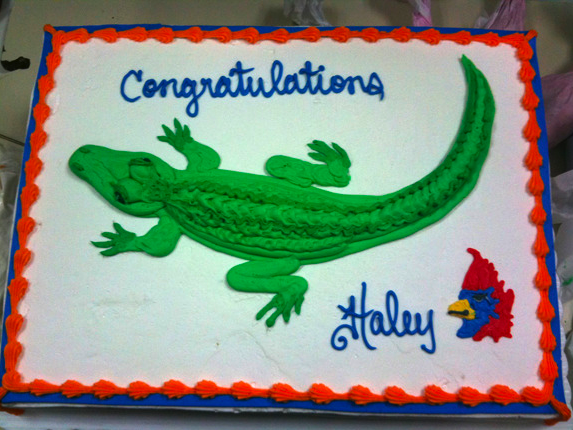 Gator out of Icing