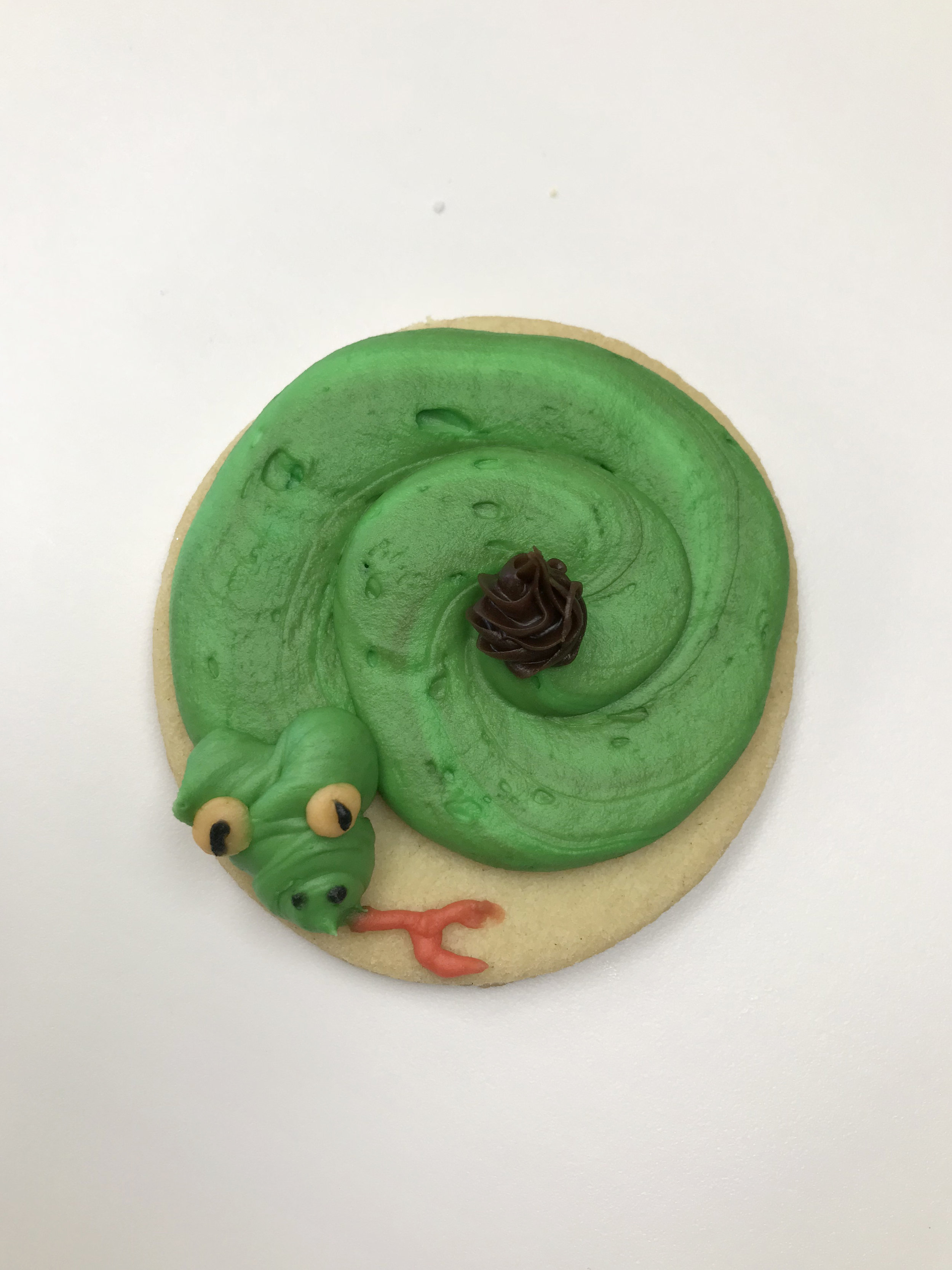 Snake Cutout Cookie