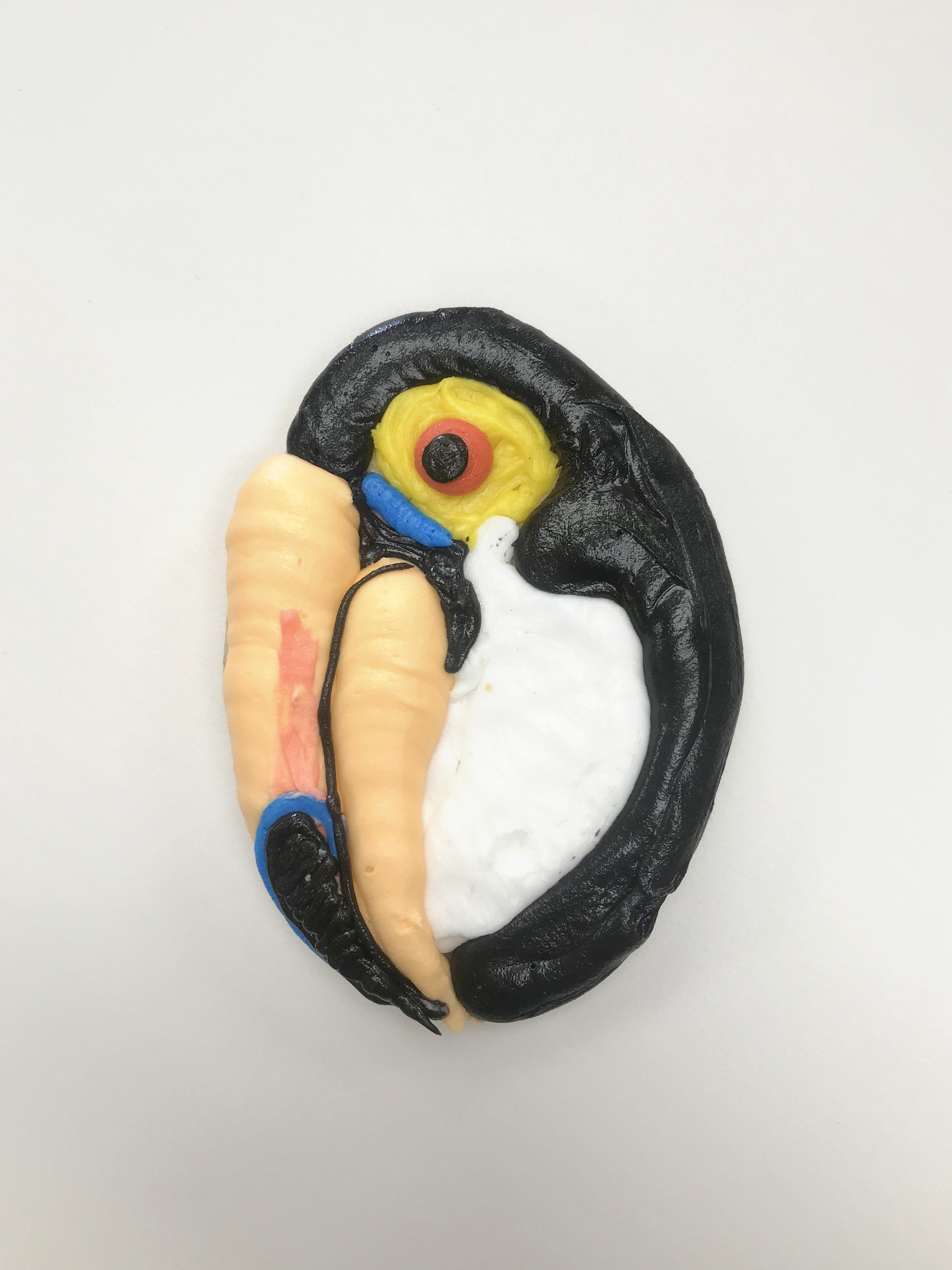 Tucan Cutout Cookie
